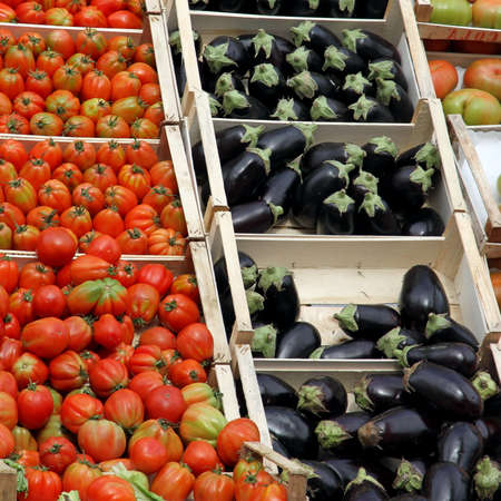 fresh fruits and vegetables and seasonal fruit and vegetable market at retail and wholesale