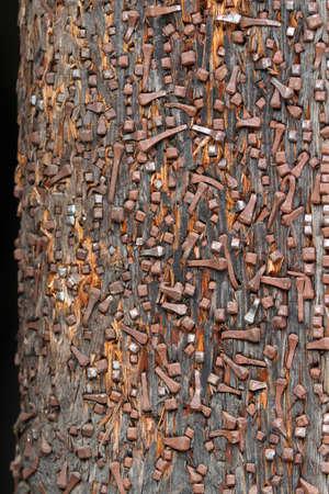 ferreteria: fondo de muchos un hardware de u�as muchos de ellos oxidados