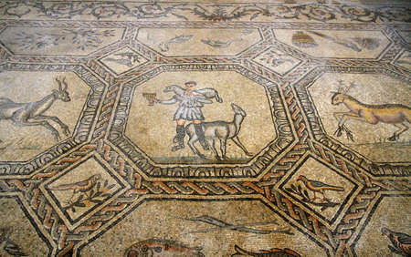 good shepherd: valuable and famous mosaic of the good shepherd in the historic church of AQUILEIA