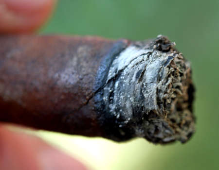 detail of an italian cigar ash photographed from very close photo