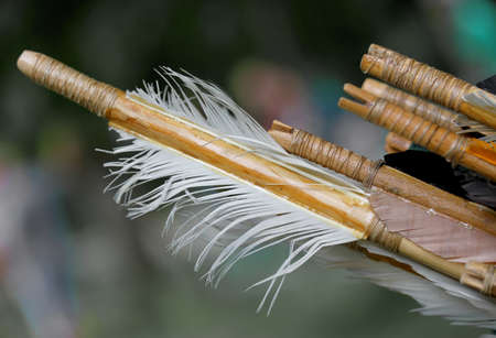 feathers for the stabilization of the old wooden hunting arrow and bird feathers Stock Photo
