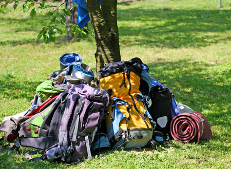 knapsacks: backpacks of Boy Scouts around the tree during an excursion in the nature park