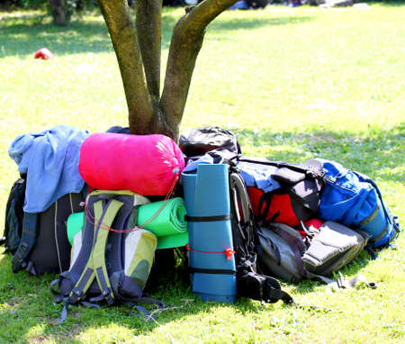 knapsacks: backpacks of Boy Scouts around the tree during an excursion in the nature park 2 Stock Photo