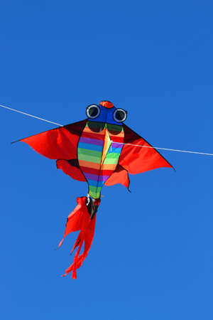 free thought: colorful giant kite that flies high in the sky blue