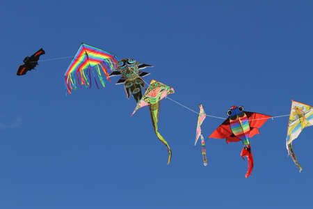 flutter: colorful kites flutter free high in sky blue