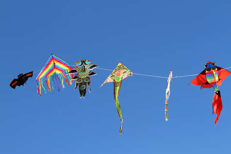 free thought: colorful kites flying high in the sky blue 2