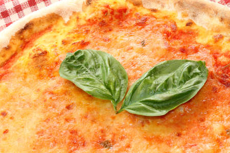 pizza with mozzarella and two basil leaves in the Italian restaurant photo
