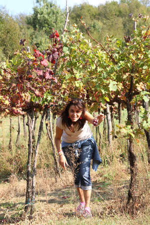 pretty woman in the vineyard in autumn in the Italian hills photo