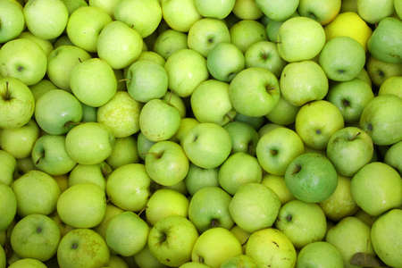 background of green apples on sale at the local market Foto de archivo