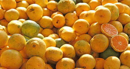 rutaceae: Yellow ripe lemons from Sicily for sale at the local market