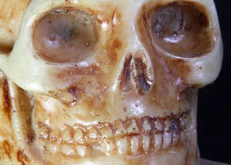 terrifying: terrifying skull with teeth and eye orbits