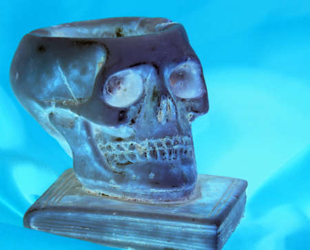 grinding teeth: skull above a book and orange background