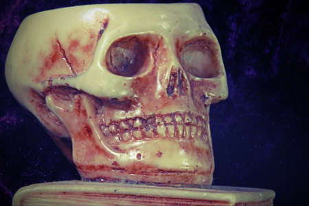 grinding teeth: great skull above an ancient book
