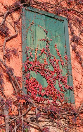 balcony of an old abandoned house with yellowed leaves of autumn
