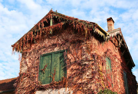 abandonment: detail of an old abandoned house with colorful autumn leaves Stock Photo