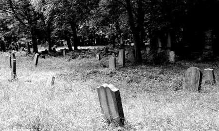 tumbas: tumbas y l�pidas de un viejo cementerio abandonado antiguas