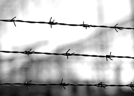not open: three lines of barbed wire to demarcate the border