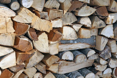 woodshed: detail of Woodshed with pieces of wood cut for the stove a