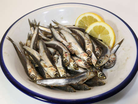 dish with freshly caught raw anchovies and two slices of yellow lemon photo