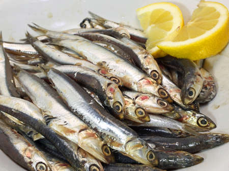 fished: dish with fresh little sardines just fished and two slices of lemon