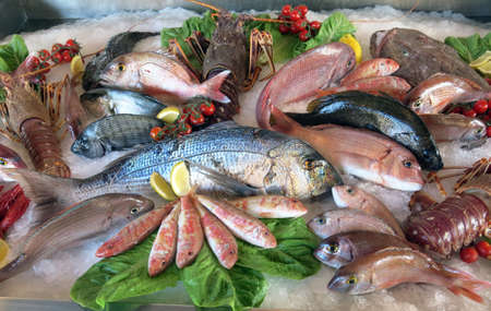 great white sea bream many saltwater fish fresh in the fridge of the seafood restaurant in southern Italy