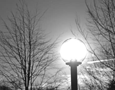 lumens: lamppost with neon light and the sun shining