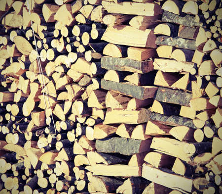 woodshed: large Woodshed with pieces of wood cut