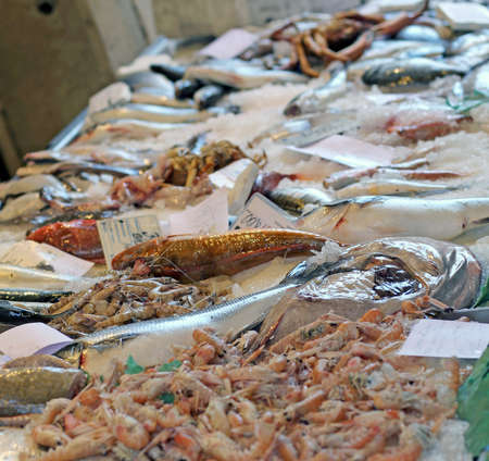 fish market: very fresh fish on sale in fish market outdoor market Stock Photo