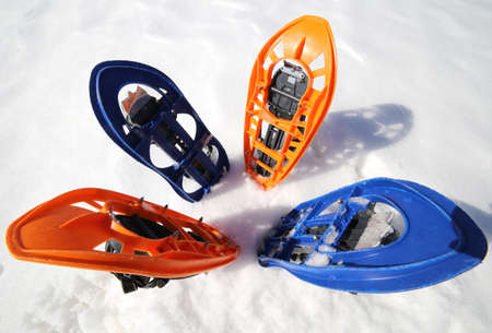 snowshoes: flower with two pair of modern snowshoes