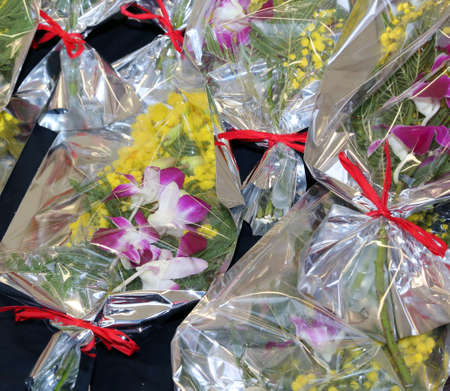 mimose: mimosa e orchidee per la festa della donna l'8 marzo