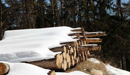 woodshed: pile of logs cut in the mountains under the white snow Stock Photo