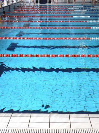 lane marker: indoor swimming pool pool with blue water and the swimming lanes