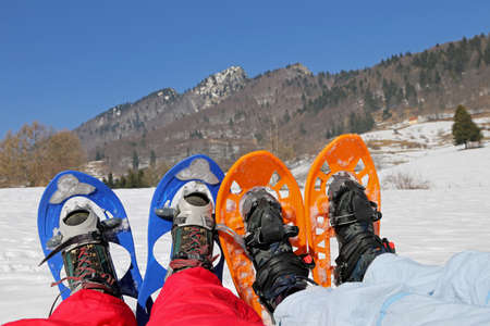 excursions: Four legs with snowshoes for excursions on the snow in the mountains