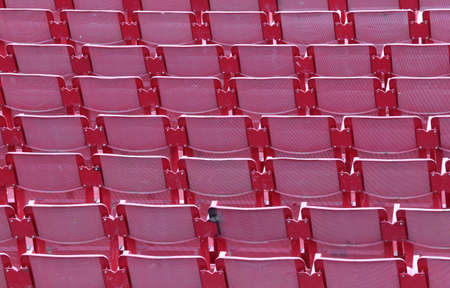 absenteeism: empty red chairs of iron before the musical concert