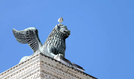 winged lion: winged lion statue in piazza san marco in Venice and Seagull in head on Mane Stock Photo