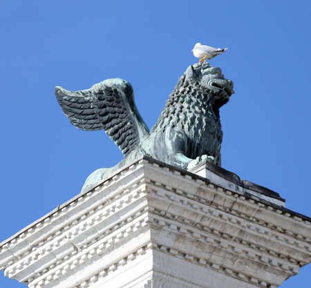 piazza san marco: winged lion statue in piazza san marco in Venice and Seagull in head on Mane Stock Photo