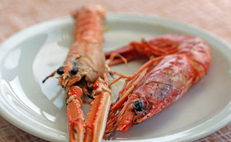 langoustine: grilled fish with prawn and Norway lobster in the restaurant Stock Photo