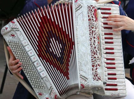 plays: hands of a young woman plays the accordion keyboard