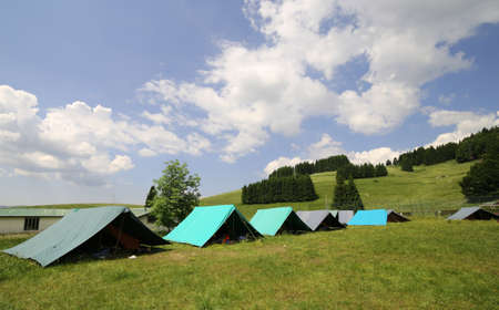 boy scouts tent: row of tents in the summer camp of the boyscout outdoor