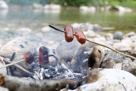 cooked sausage: cooked sausage with stick in the fire of summer camp