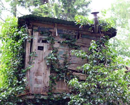 camouflaged: camouflaged wooden hut of hunters in the Woods