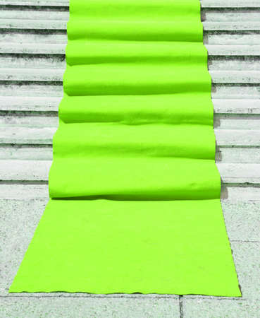 green carpet: long staircase with light green carpet and the access door open
