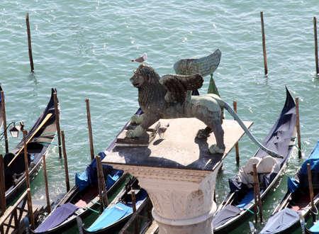 leon con alas: Venecia Italia con alas símbolo del león de la República Serenísima de Venecia con una gaviota