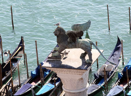 winged lion: Venice Italy Winged lion symbol of the serenissima Venetian Republic with a seagull Stock Photo