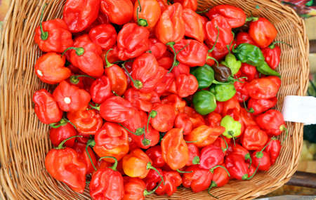 habanero: basket with spicy red ripe habanero peppers Stock Photo
