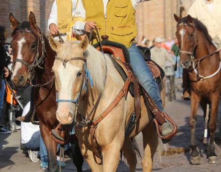forelock: many cowboys riding horses Stock Photo