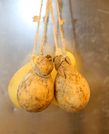 provola: many caciocavallo cheeses hanging with special string for sale on the Italian market Stock Photo
