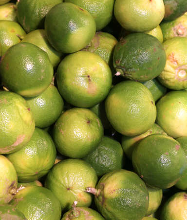 ailment: bergamia citrus or green  bergamot  for sale to the italian greengrocery