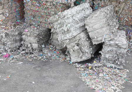 recycling center: HUGE heaps of waste paper in the paper mill for the production of recycled paper