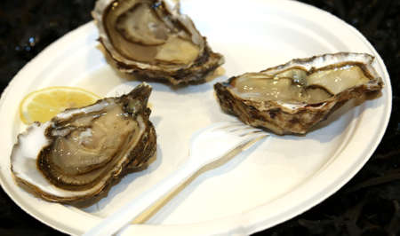 french cuisine: delicious raw oysters served with lemon typical dish of French cuisine